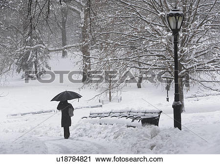 Stock Photography of Person walking in snowy park u18784821.