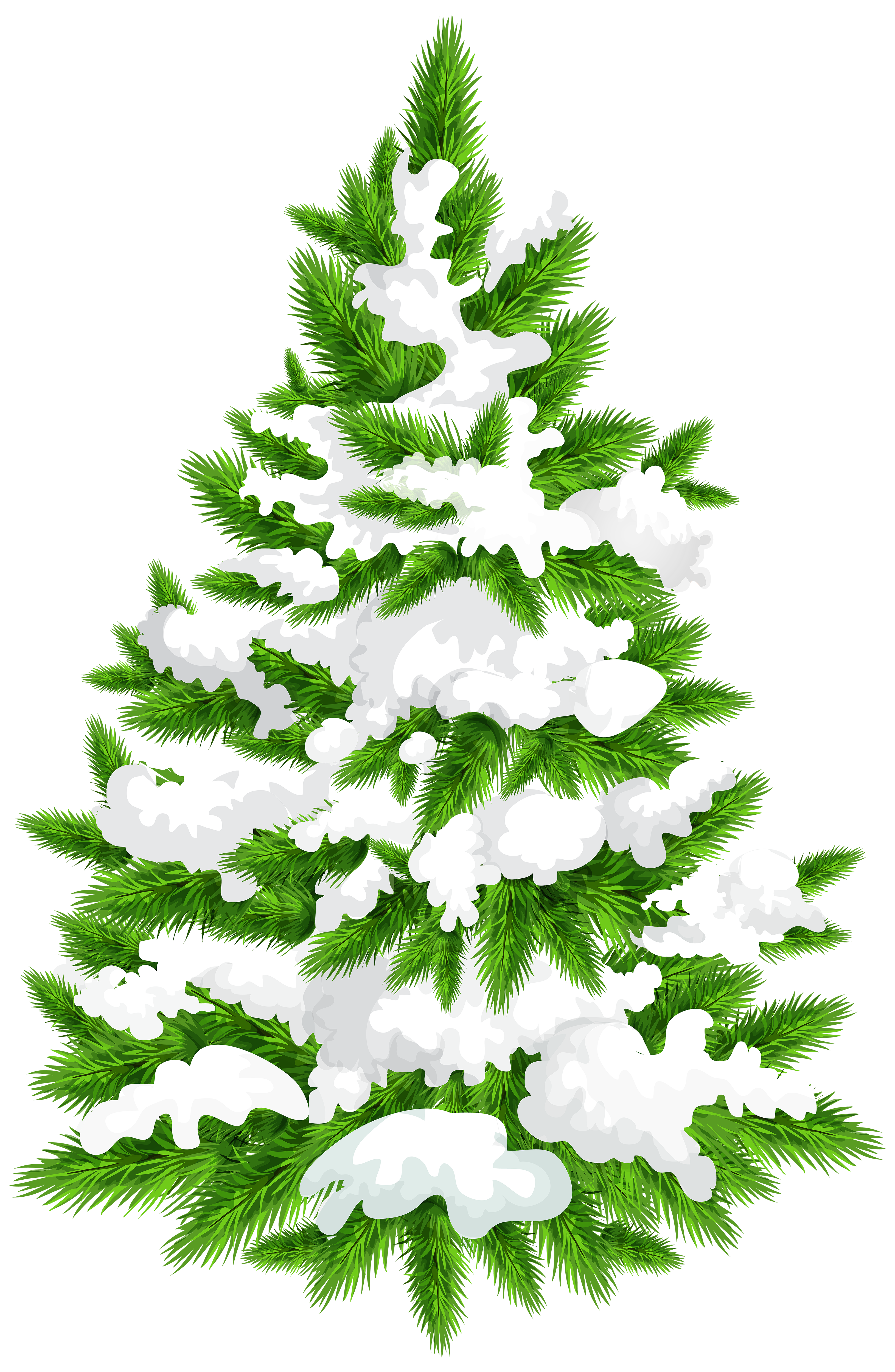 Snowy Pine Tree PNG Clip Art Image.