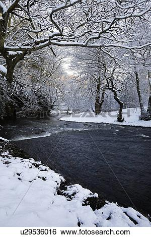 Stock Images of River view in woodland with snow.