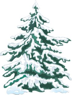 Evergreen tree with snow clipart.