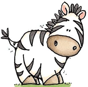 Baby Zebra. so cute!.