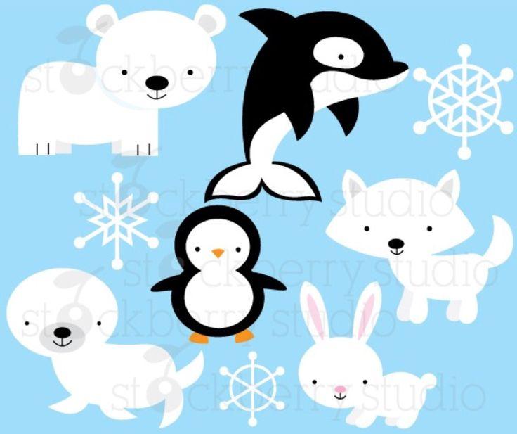 17 Best images about Arctic animals on Pinterest.
