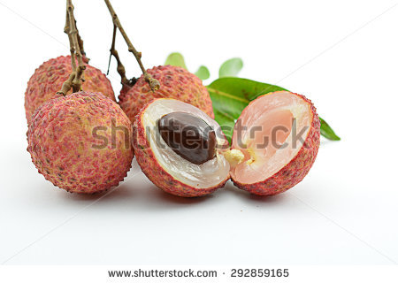 Soapberry Stock Photos, Royalty.