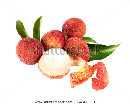 Soapberry Plants Stock Photos, Royalty.