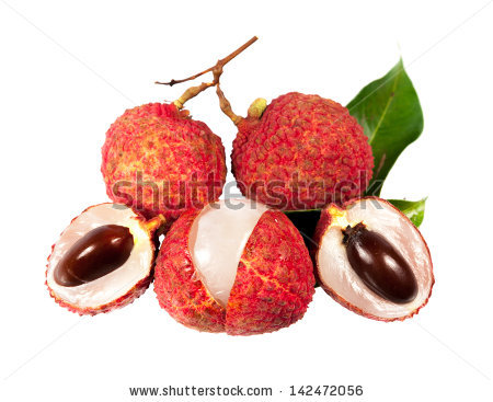 Soapberry Plants Stock Photos, Royalty.