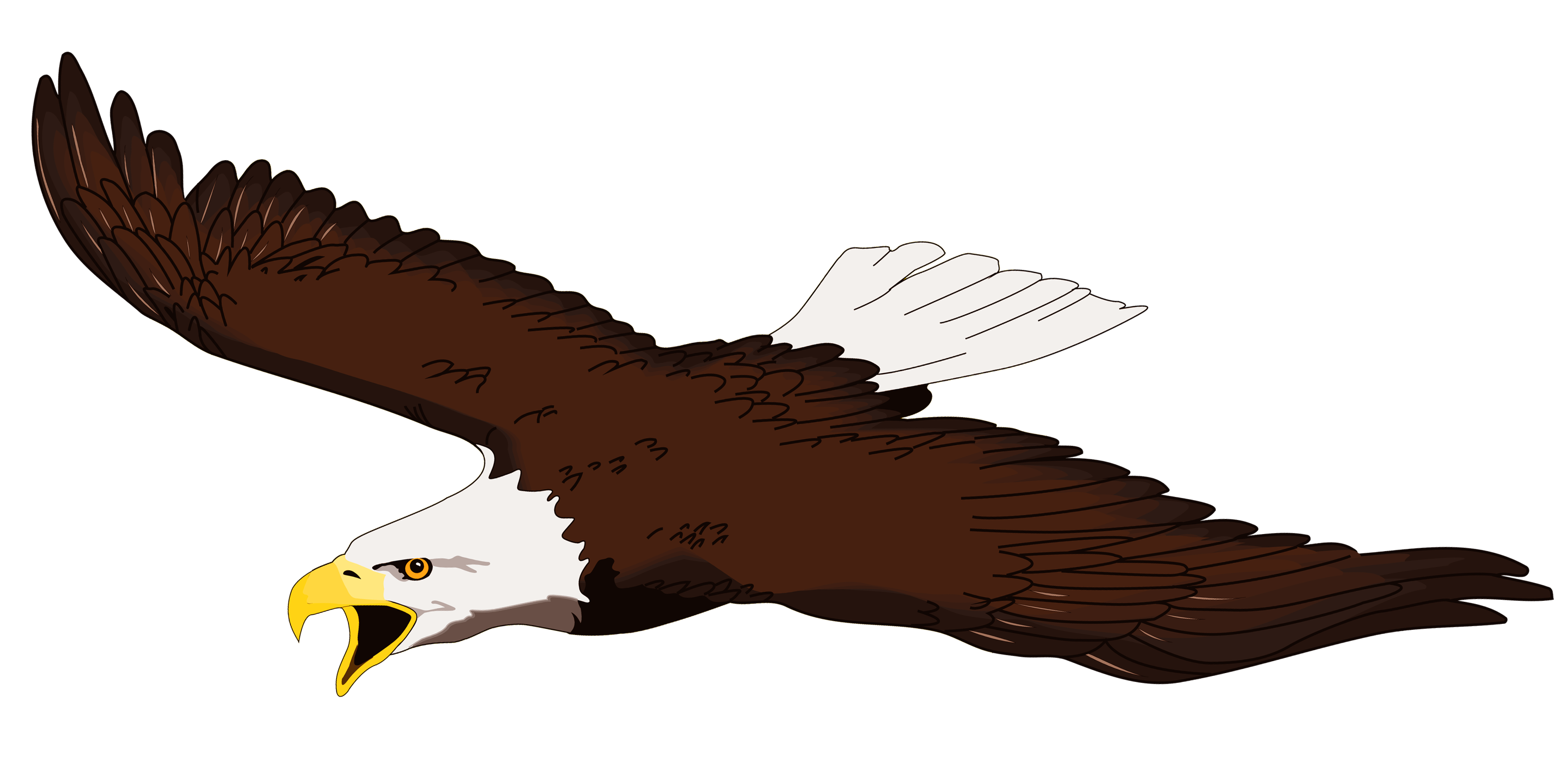 Images For > Clip Art Soaring Eagle.