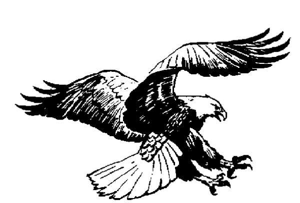 7569 Eagle free clipart.