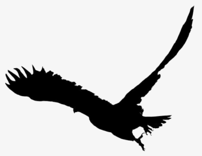 Free Soaring Eagle Black And White Clip Art with No.