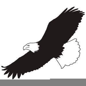 Free Clipart Eagle Soaring.