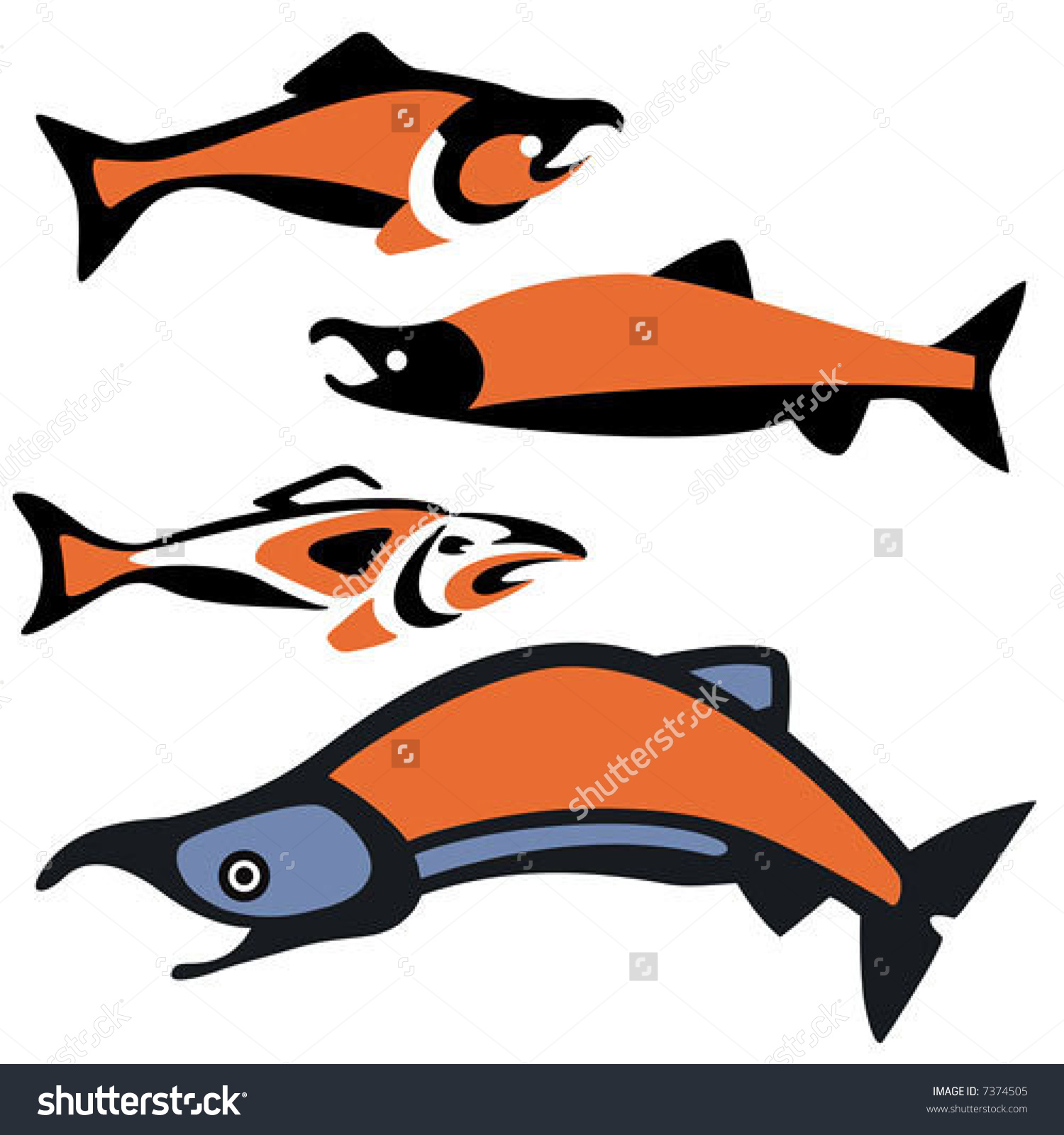 Various Depictions Sockeye Salmon Drawn Pacific Stock Vector.