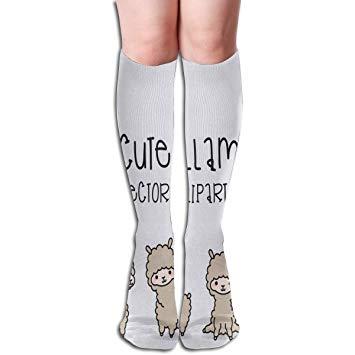 Amazon.com: Socks Vector Clipart Cool Womens Stocking.