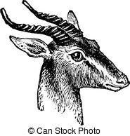 Clipart Vector of Soemmerring's Gazelle or Nanger soemmerringii.