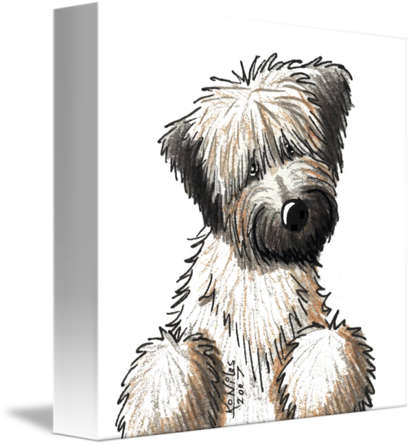 Soft Coated Wheaten Terrier by Kim Niles.