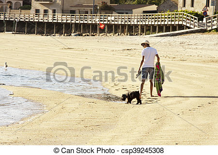 Stock Photography of man walking with the dog on the beach. Summer.