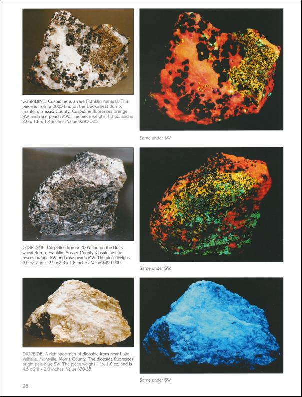 Cutting Rocks: Rocks and Minerals Books and Videos.