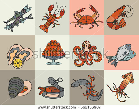 Molluscs Stock Photos, Royalty.