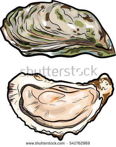 Bivalves Stock Photos, Royalty.