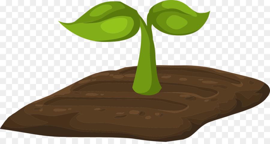 Leaf Cartoon clipart.