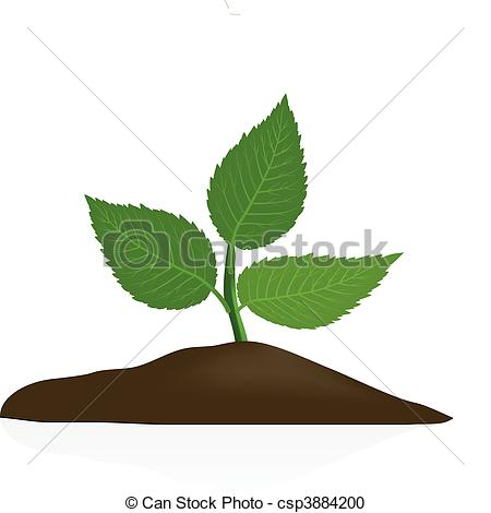 Soil Stock Illustrations. 15,387 Soil clip art images and royalty.