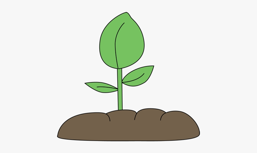 Soil Plant In Clip Art Clipart Free Transparent Png.