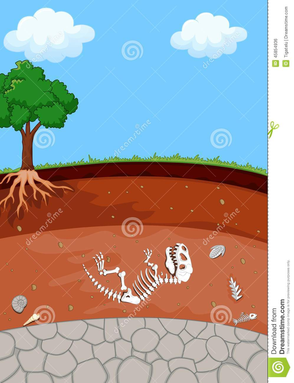 Soil layer clipart - Clipground