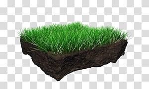 Soil Profile transparent background PNG cliparts free.