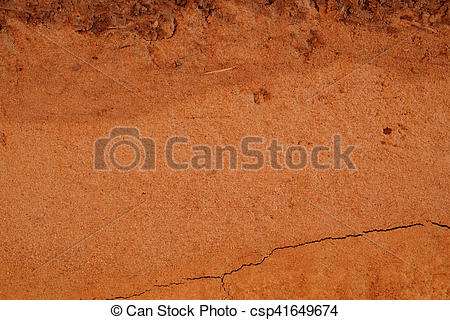 peat soil texture background.