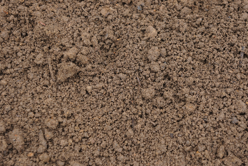 Soil texture png 1 » PNG Image.