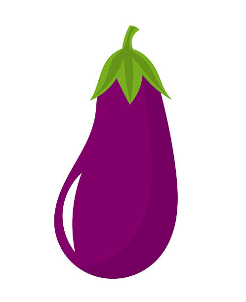 Solanum Melongena Clip Art, Vector Images & Illustrations.