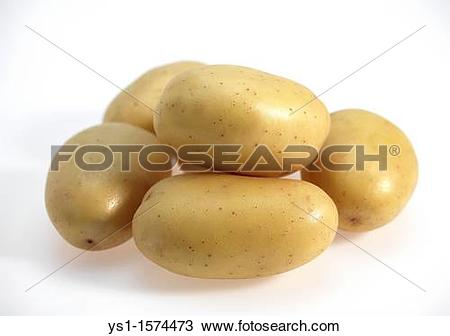 Stock Photo of Mona Lisa Potato, Solanum tuberosum, Vegetables.