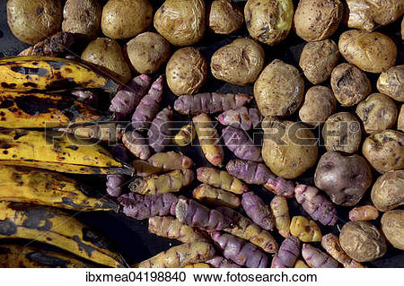 Stock Photography of Bananas (Musa), potatoes (Solanum tuberosum.