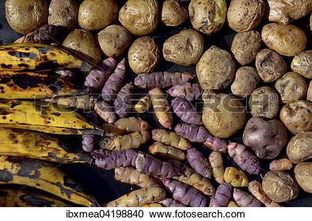 Stock Photography of Bananas (Musa), potatoes (Solanum tuberosum.