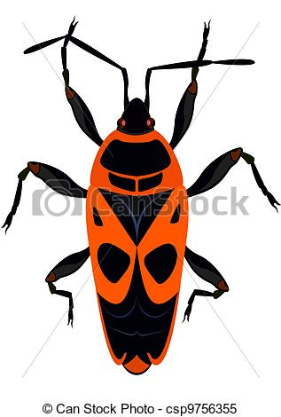 Clipart Vector of Beetle.