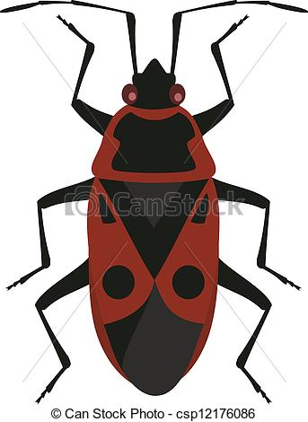 Vector of Red soldier bug csp12176086.