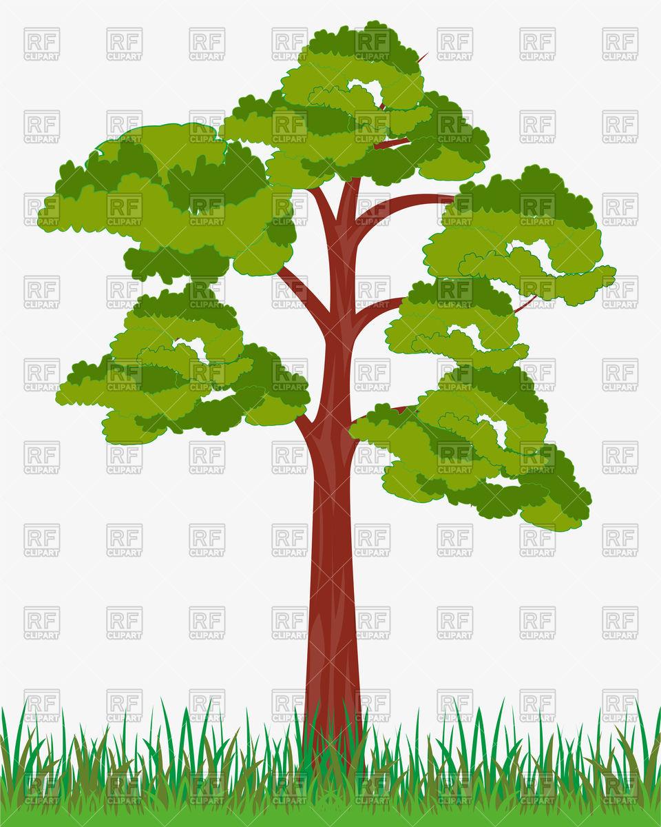 Big solitary tree Vector Image #136499.