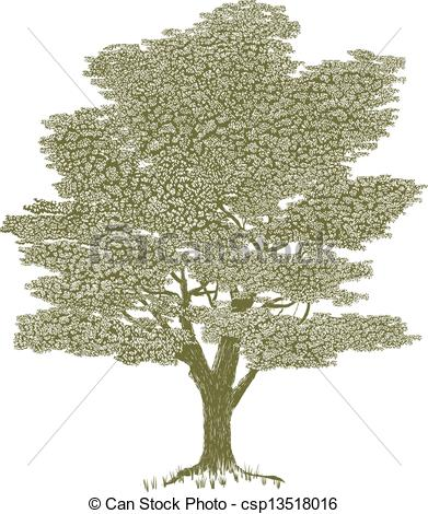 Solitary tree clipart.