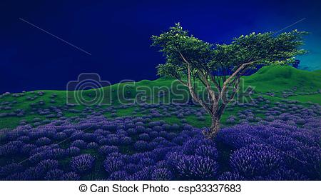 Pictures of Lavender fields with solitary tree.