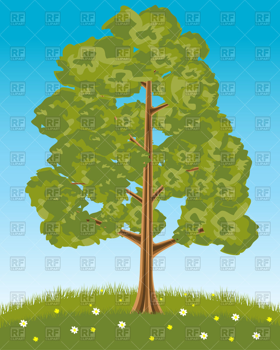 Solitary tree on glade with flowers Vector Image #94020.