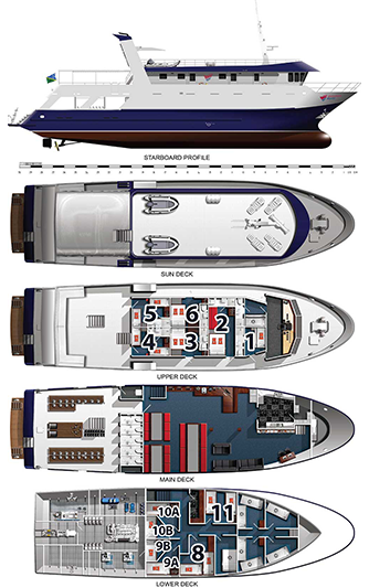 Liveaboard download free clipart with a transparent.