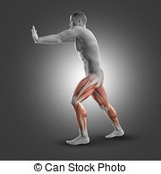 Gastrocnemius soleus Clip Art and Stock Illustrations. 23.