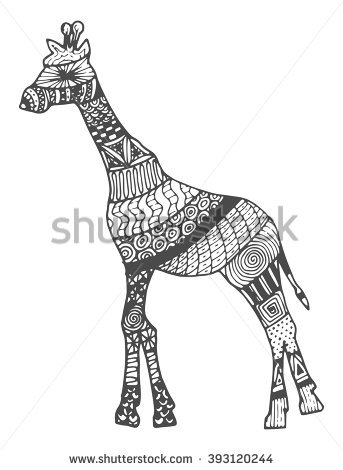 Somali Giraffe Commonly Known Reticulated Giraffe Stock Vector.