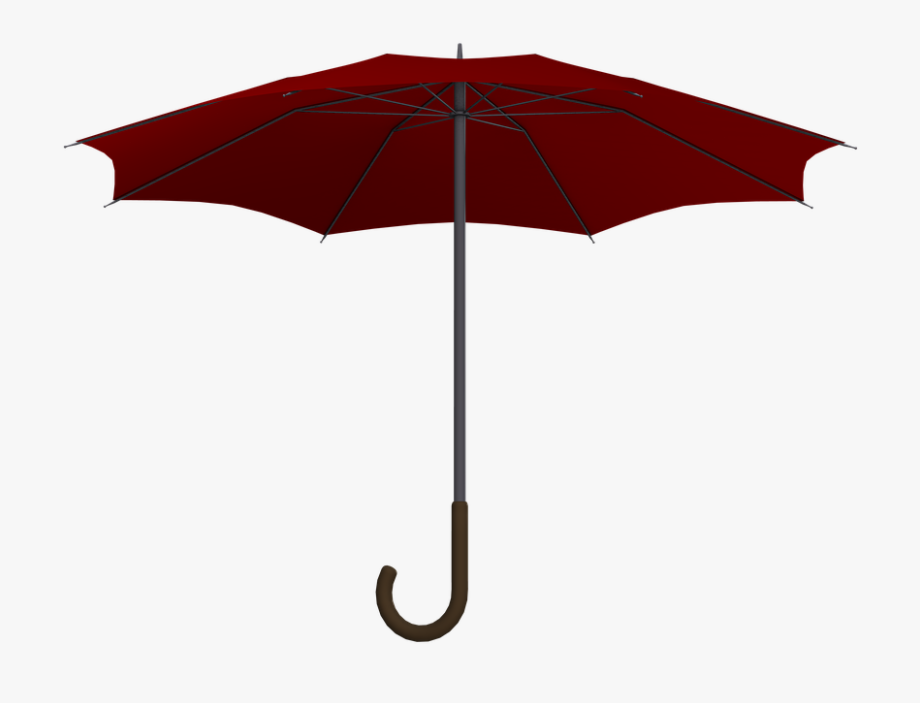 Screen, Umbrella, Parasol, Protection, Open.