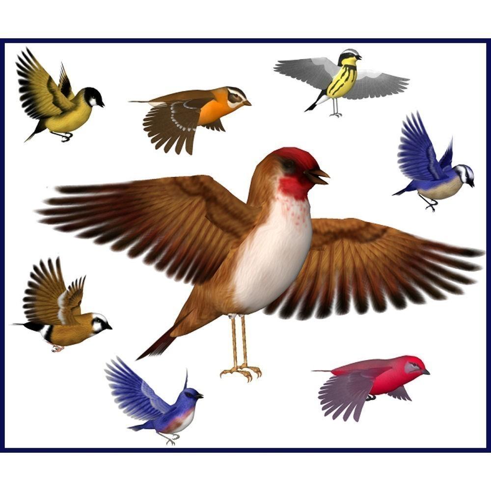 Beautiful Songbirds Graphics Clip Art Set by deannasdreams.