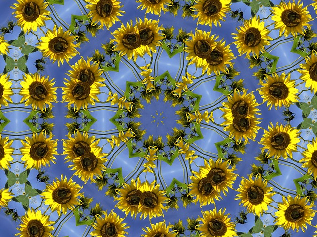 Free pictures KALEIDOSCOPE.