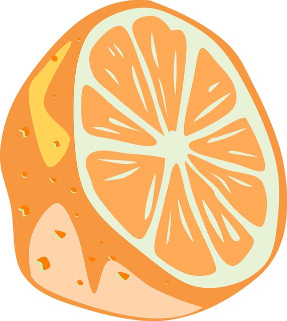 Free vector graphic: Orange, Half, Slice, Fruit, Peel.