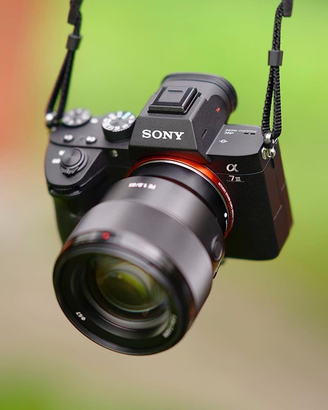So #bokehlicious Sony a7iii 85mm f/1.8.