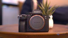 53 Best Sony a7 III Alpha Mirrorless Digital Camera ILCE.