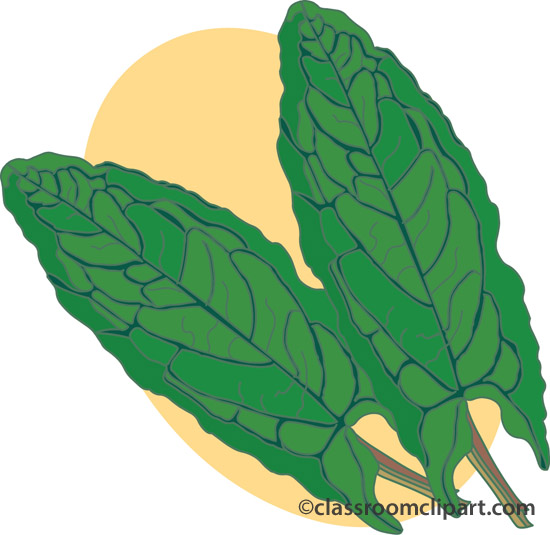 Herbs and Spice : sorrel : Classroom Clipart.