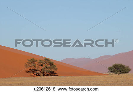 Pictures of Sand Dunes of Sossusvlei.