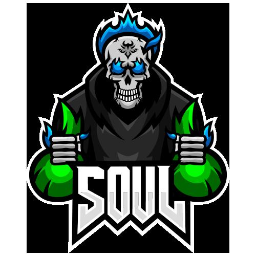 Team SouL.